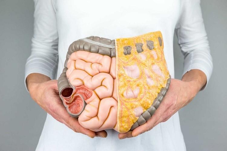 Các bệnh về tiêu hóa và đường ruột thường gặp