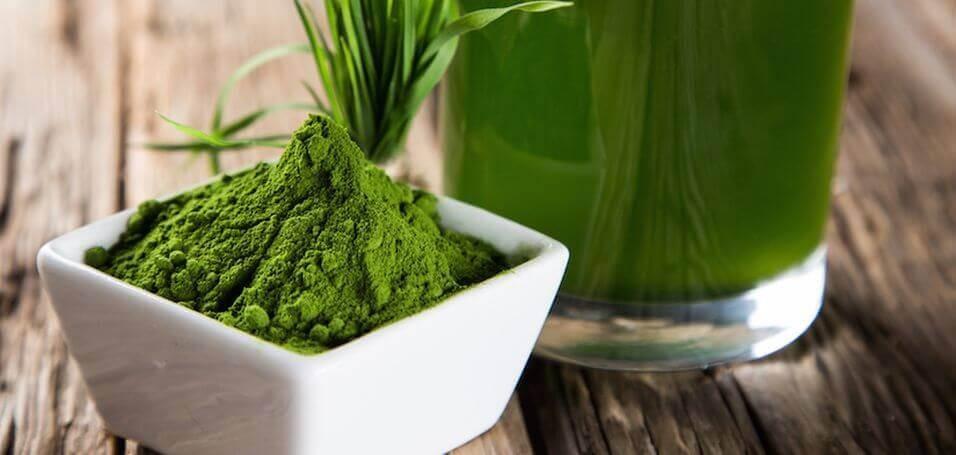 Chuyên gia chia sẻ trẻ em có nên uống tảo Nhật
