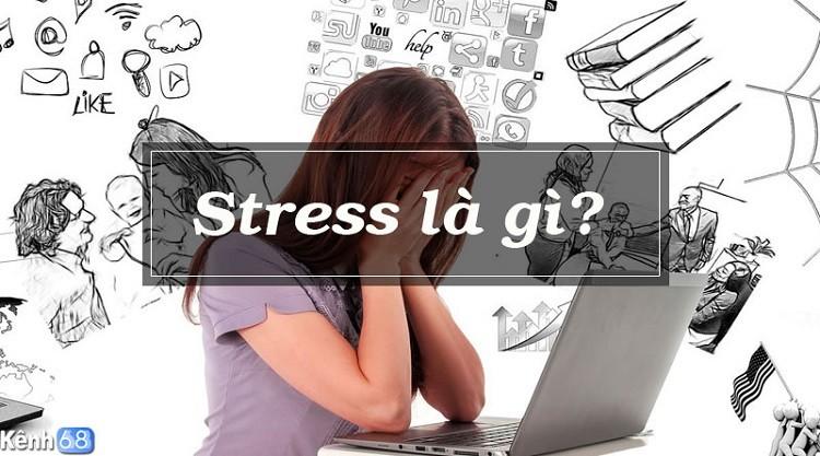 Bị stress là gì? Triệu chứng và cách xả stress là gì