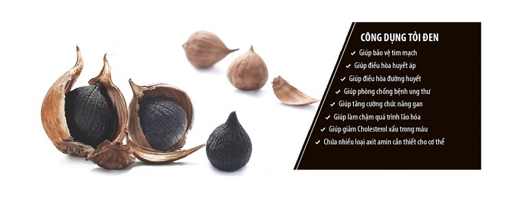 tỏi đen chứa chống oxy hóa