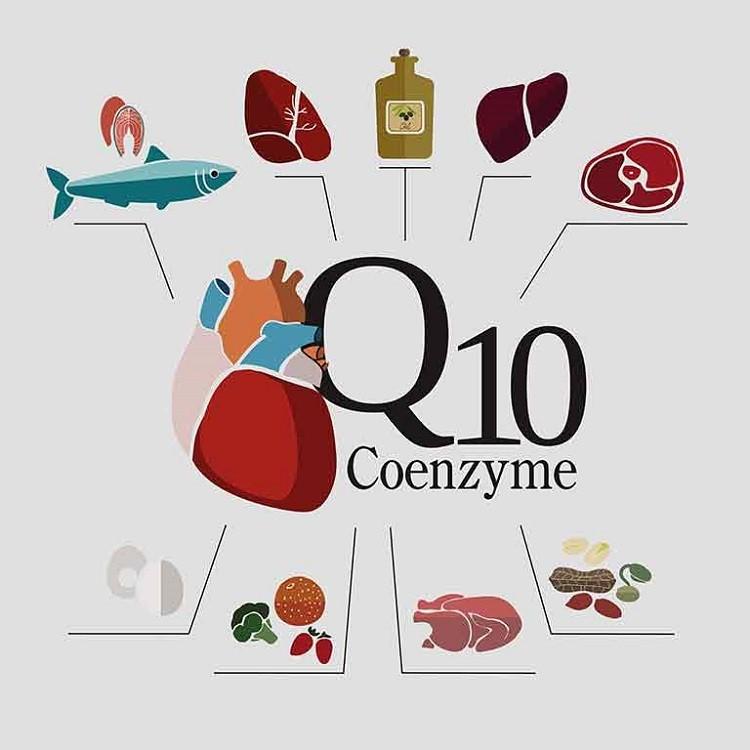 bổ sung CoQ10 từ thực phẩm