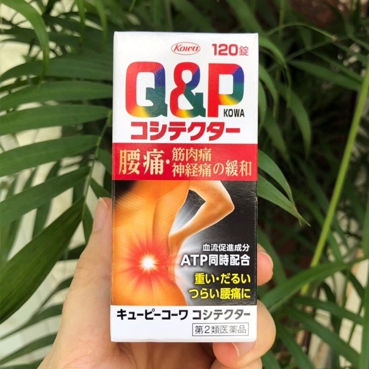 Q&P Kowa Nhật Bản