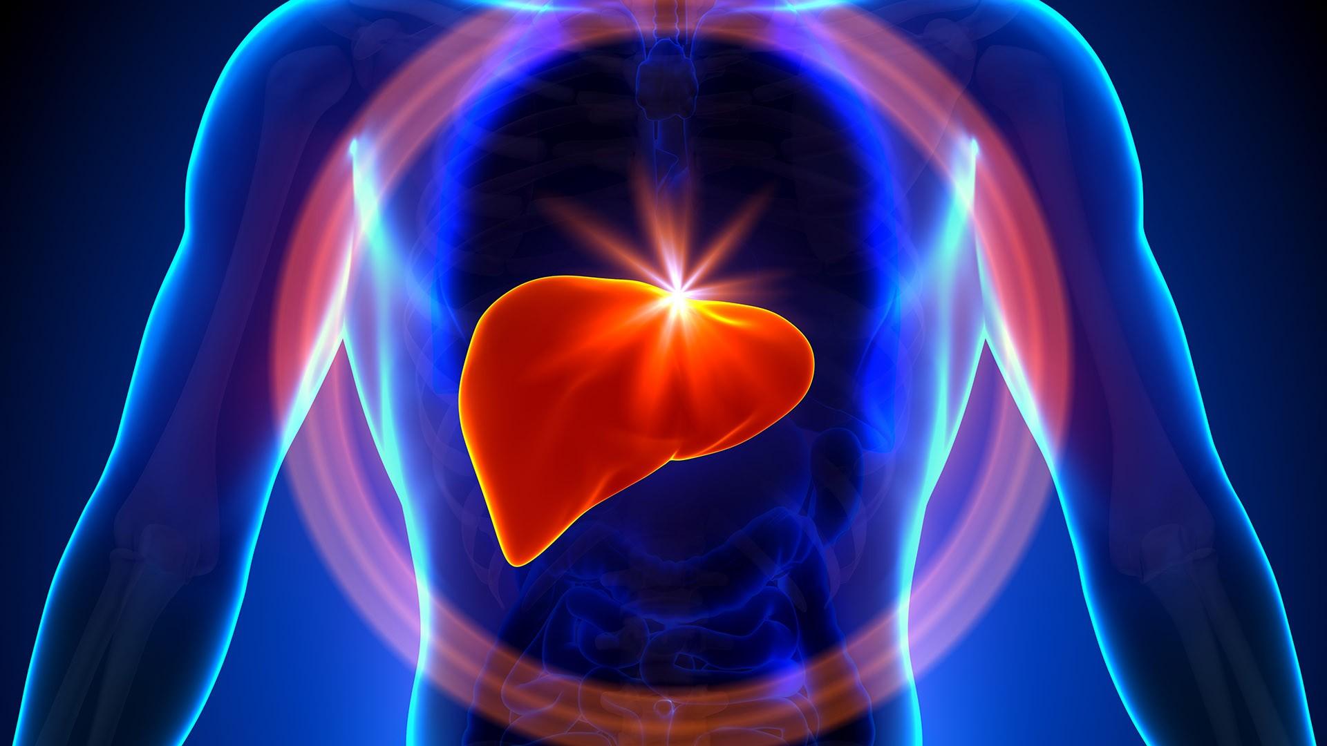 Hỗ trợ bảo vệ gan
