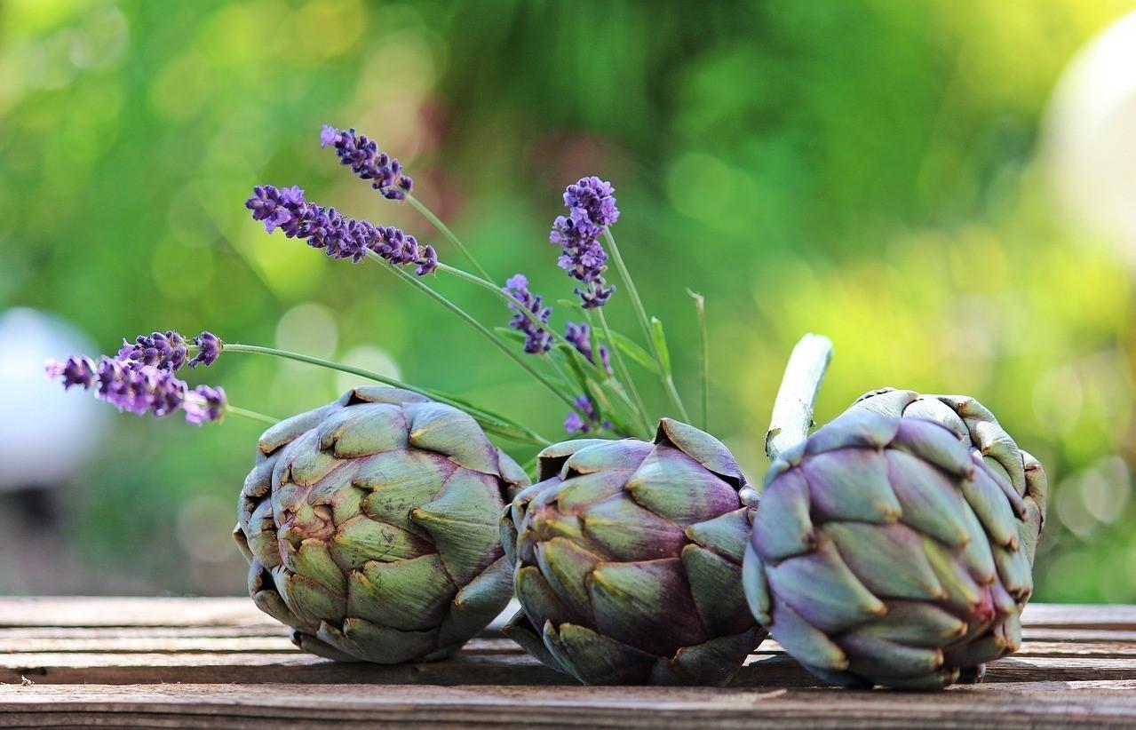 Atiso là một trong những loại thảo dược tự nhiên phổ biến