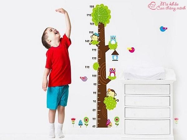 cách tăng chiều cao, cách tăng chiều cao ở tuổi 14, cách tăng chiều cao ở tuổi 15, cách tăng chiều cao ở tuổi 16, cách tăng chiều cao ở tuổi 17, cách tăng chiều cao ở tuổi dậy thì, cách tăng chiều cao ở tuổi 13, cách tăng chiều cao ở tuổi 10, cách tăng chiều cao ở tuổi 18, cách tăng chiều cao ở tuổi 12